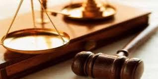 اللائحة التنفيذية لنظام المحاماة – أحكام عامة وانتقالية